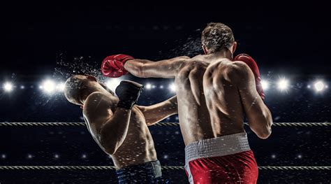 Wallpapers Men to beat Human back Two Sport Boxing