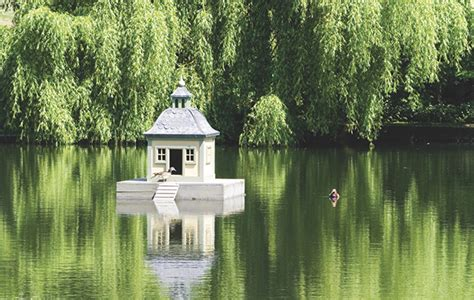 Luxury duck houses: fabulous for fowl - The Field