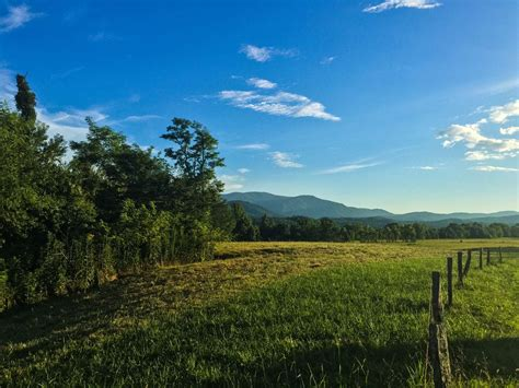 Cades Cove Campground, Great Smoky Mountains, TN: 4