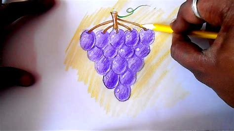 How to draw Grapes easy - YouTube