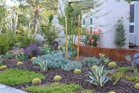 More xeriscaping ideas I like | Xeriscape landscaping