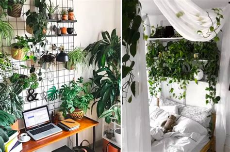 18 Inspiring Indoor Gardens For Anyone Who Doesn't Have A
