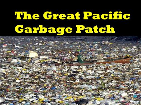 PPT - The Great Pacific Garbage Patch PowerPoint
