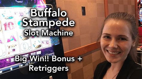 Buffalo STAMPEDE! Max Bet * BIG WIN!!! Patience pays off